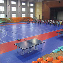 Indoor Multi Sport Flooring